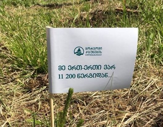 home_agro_contact